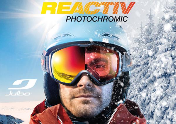 Julbo Ski Goggles